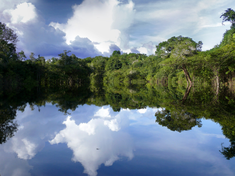 Amazon river reflections, Brazil