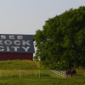 """See Rock City"" was painted on barn roofs all over the South."