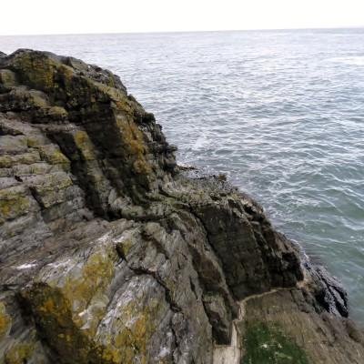 Cardigan Island. Photo by Rude Health.