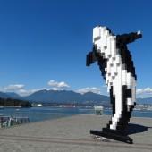 403 Vancouver