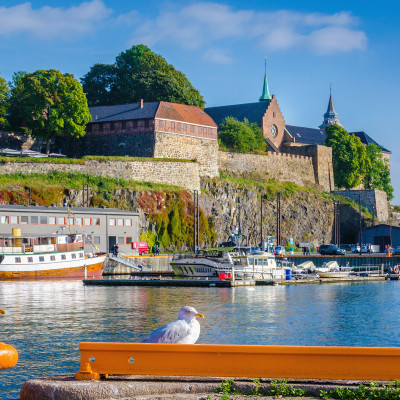 Seagul in harbor in front of Akershus fortress, Oslo, Norway